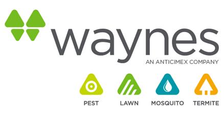 Waynes Services